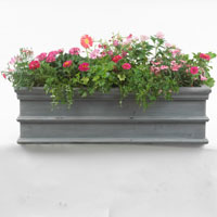 Window_box_pink